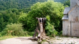 Haghartsin Monastery, hollow tree that once erupted in flames
